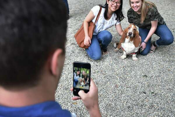 Images of the grand opening of the Mechanic Street Dog Park at 107 Mechanic Street in the East Rock section of New Haven, Thursday, September 21, 2017.