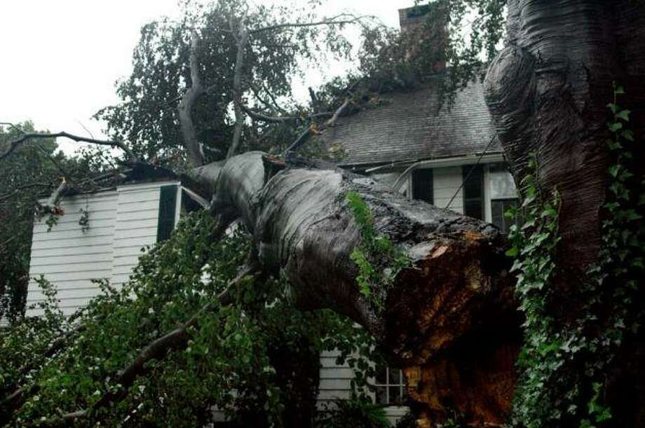 A tree fell on a house on Main Street during Hurricane Irene in 2011. Photo: File Photo