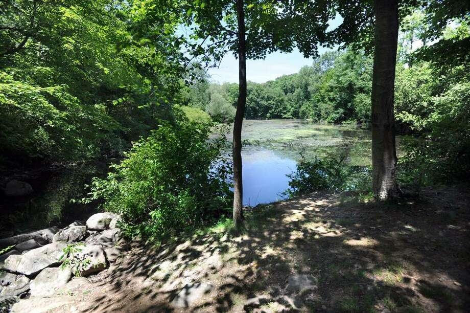 Miller's Pond in Ridgefield is an area that is part of the Route 7 greenway. Photo taken Friday, June 18, 2010. Photo: Carol Kaliff / The News-Times