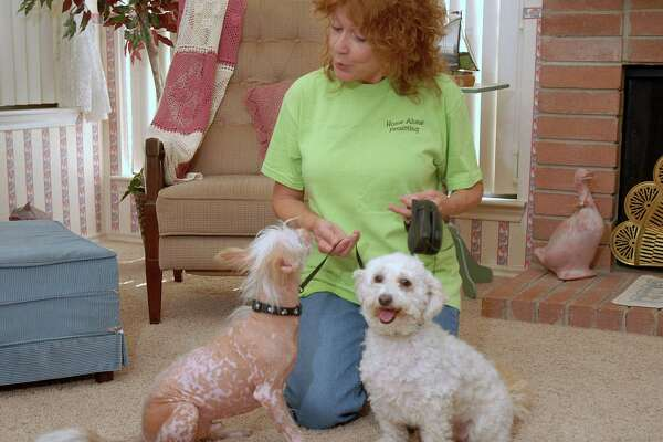 If you love animals, pet sitting is a nice way to make some extra income, and some people love it so much, they parlay it into a full-time business.