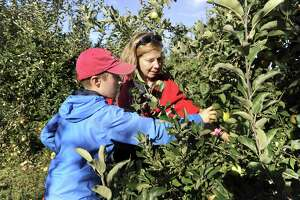Shannon Vanderheiden and her son Tommy, 13, of Bethel, pick apples at Blue Jay Orchards in Bethel Friday, Sept. 22, 2017.