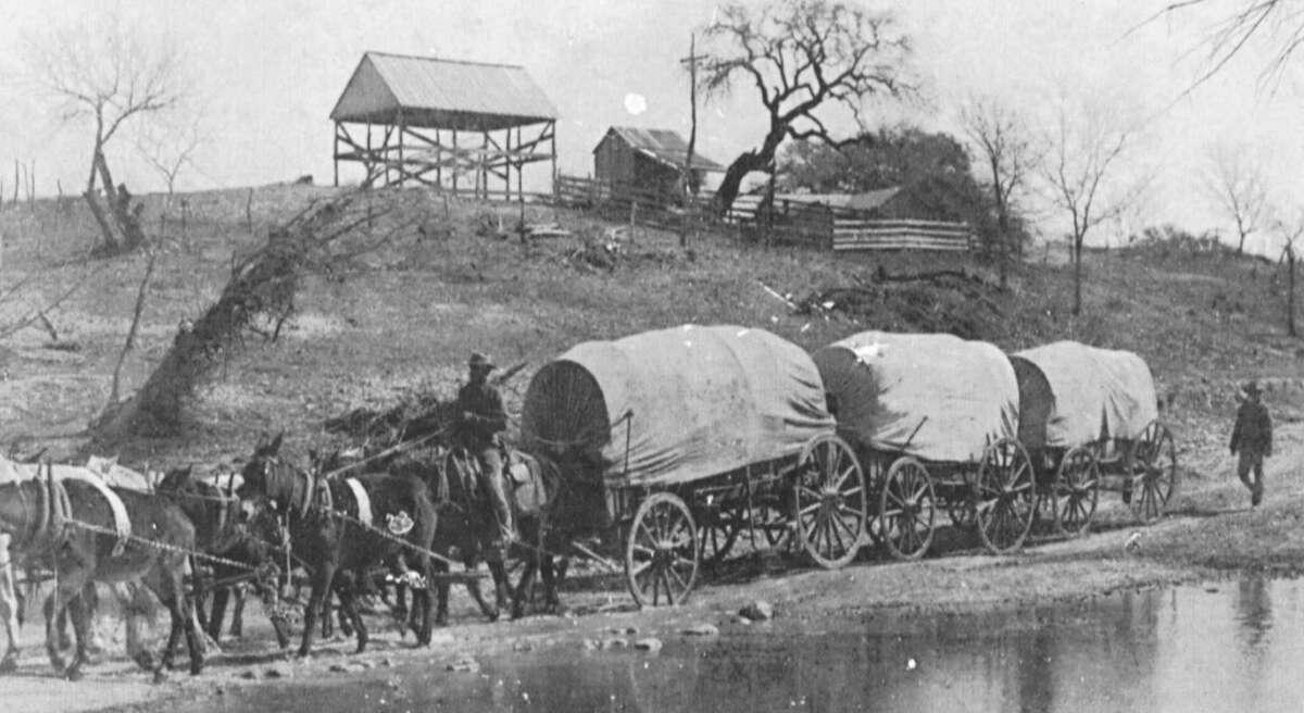 Mule drawn wool wagons near Kerrville.