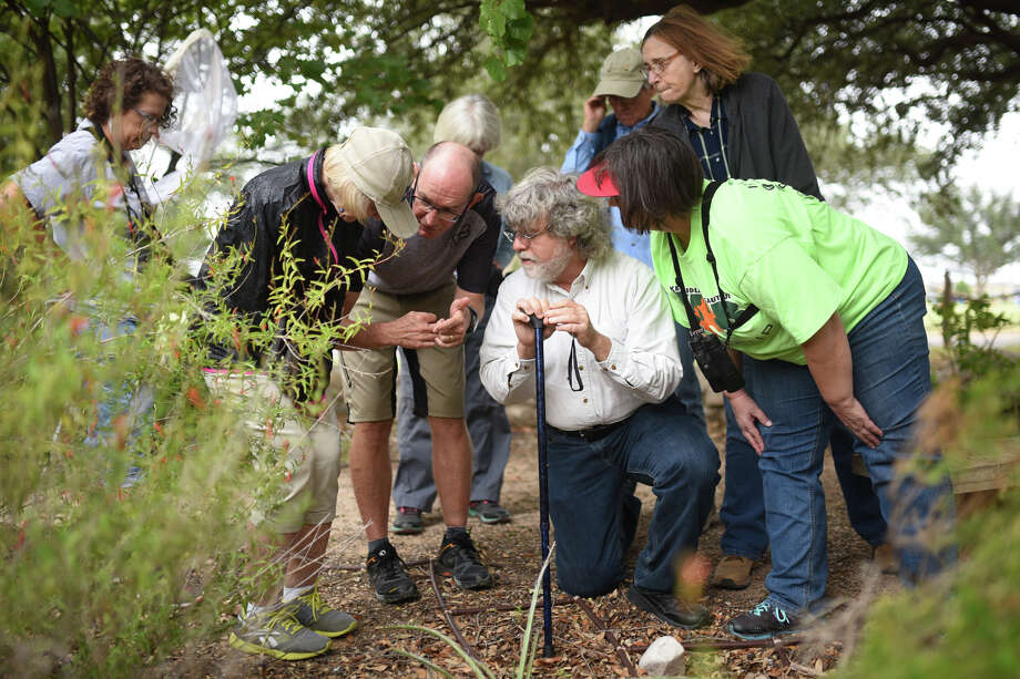 At center, Michael Nickell, museum scientist and naturalist at the Sibley Nature Center, leads a group on a tour to learn about bugs during a bug camp Sept. 23, 2017, at Sibley. There will be two more sessions of the camp Sept. 30 (9-noon) and Oct. 7 (7:30-10 p.m.). James Durbin/Reporter-Telegram Photo: James Durbin