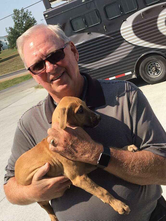 Volunteer Drives Animals Impacted By Hurricane Harvey From