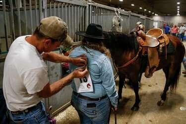 Mustang Summer - Houston Chronicle