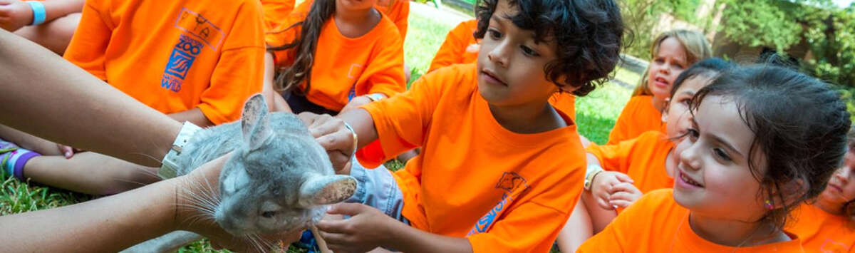 The Houston Zoo is offering three camps with different experiences for children during the holiday school breaks.