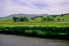 Petaluma River  5-12-06 Photo credit: Scott Hess