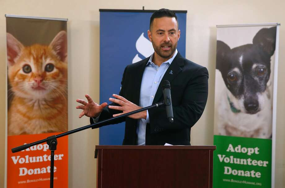 Jarrod Wise of the Better Business Bureau speaks during a news conference at the Berkeley Humane animal shelter in Berkeley, Calif. on Tuesday, Sept. 26, 2017. A study released by the BBB warns that tens of thousands of consumers have been scammed by fraudulent pet breeders on the internet. Photo: Paul Chinn, The Chronicle