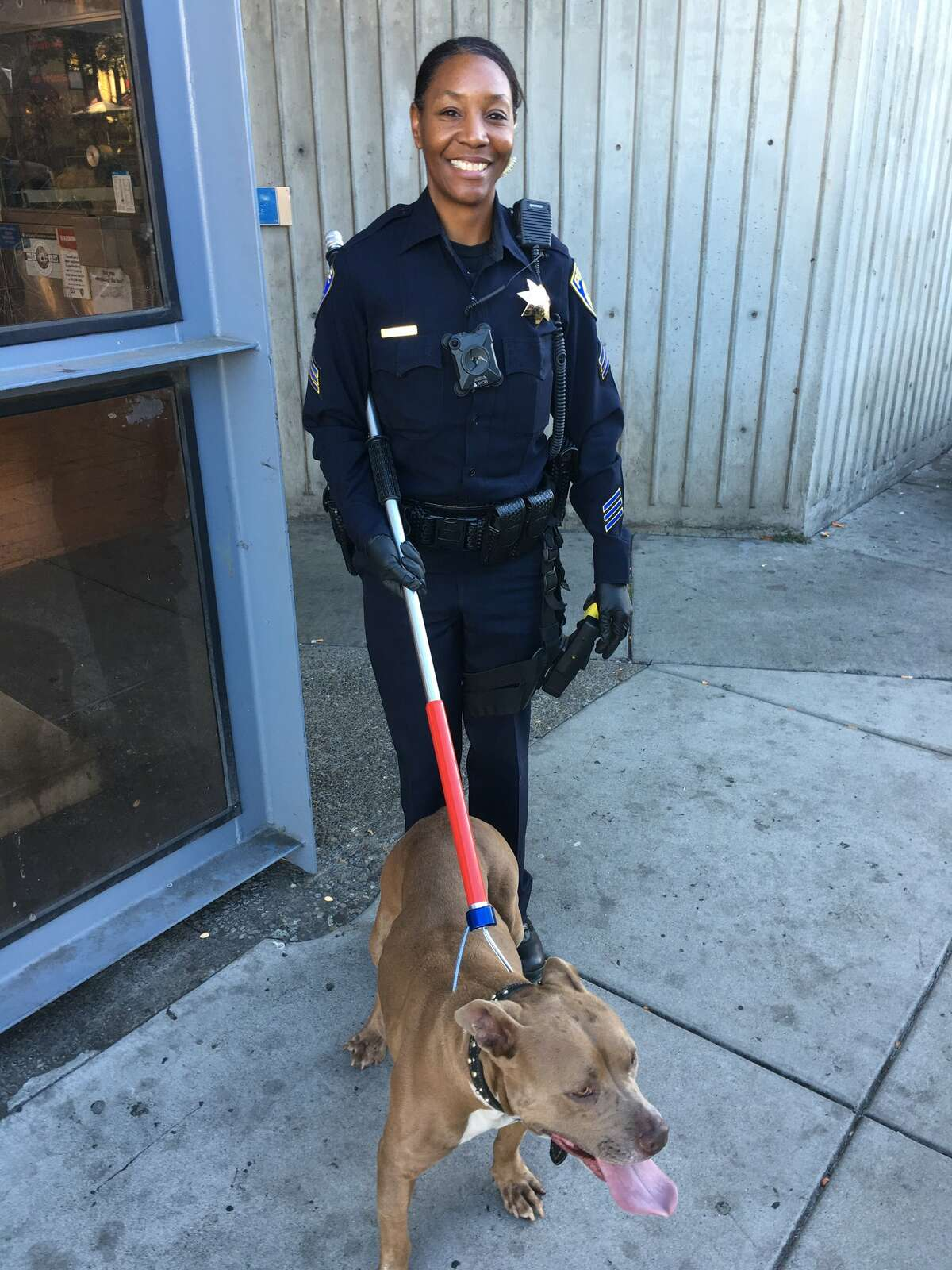 A dog was rescued from the BART tracks on Wednesday after causing delays during the morning commute.