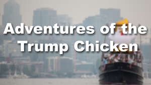 The inflatable chicken has been adopted by protests around the world as a way to call out President Trump. Here are some of the stops it's made along the way.