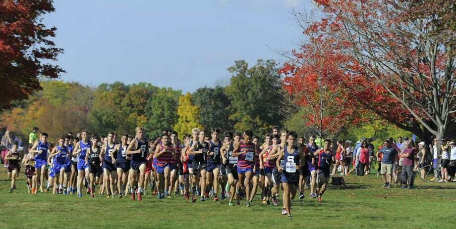 Runners compete in the FCIAC boys cross country championship at Waveny Park in New Canaan on Oct. 19, 2016. Photo: Matthew Brown / Hearst Connecticut Media / Stamford Advocate