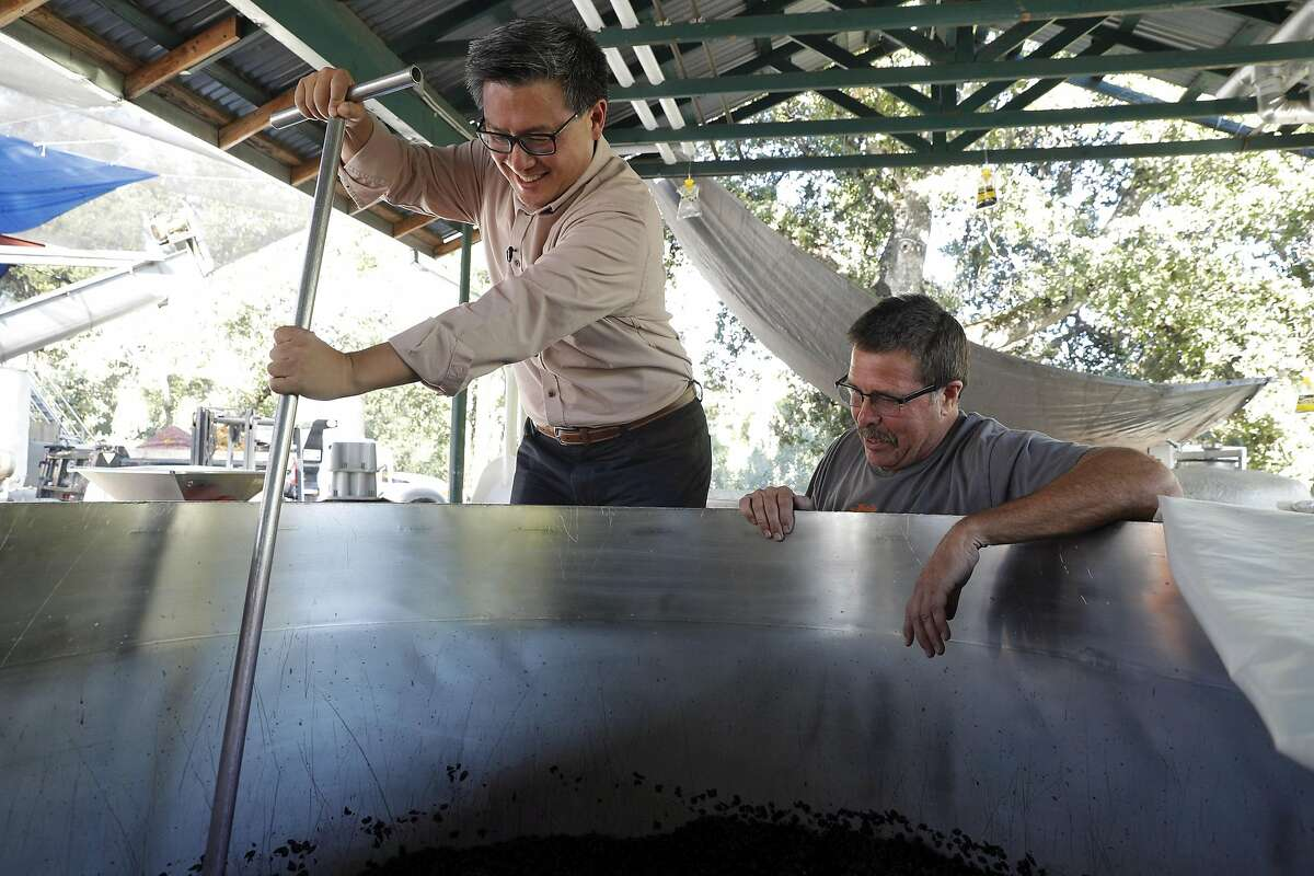 John Chiang helps to punch down a batch of fermenting wine grapes as he takes a tour of the Benziger Family Winery with Joe Benziger for his campaign for governor in Glen Ellen, Calif., on Tuesday, September 26, 2017.