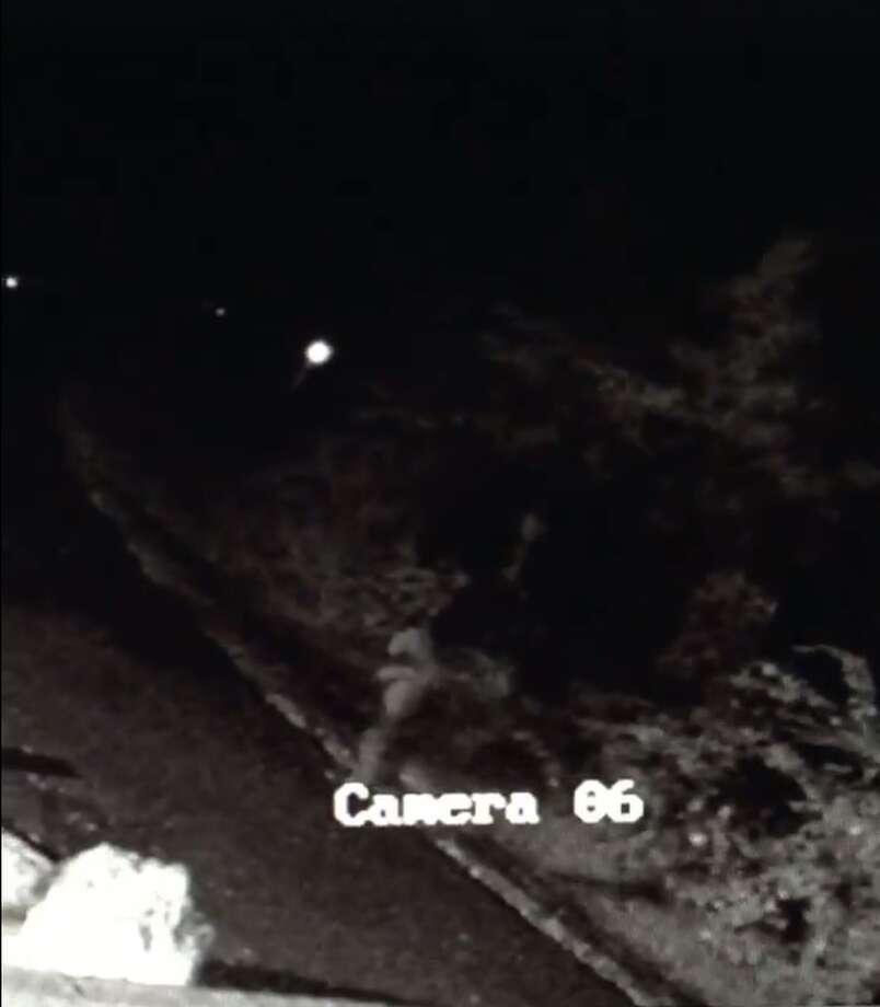 Texas State Park Posts Footage Of Bigfoot Sighting Ahead