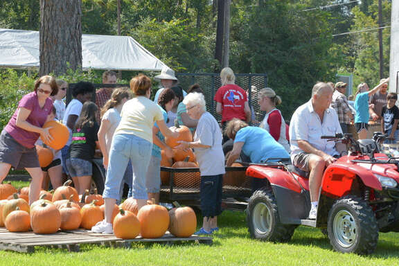 The pumpkins arrive in a tractor-trailer and are unloaded by Lake Houston Methodist Church members and friends.