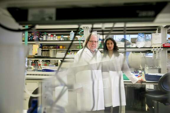 Jim Allison and Padmanee Sharma are longtime research collaborators who married in 2014. At the MD Anderson Cancer Center in Houston, the two are trying to push the frontier of immunotherapy.