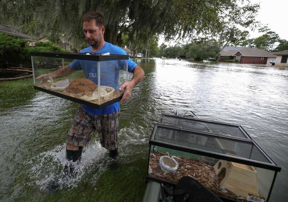 We didn't always take what was most practical during Hurricane Harvey. We took what mattered to us. In this photo: Allen Pogue carries a tank with one of his son's pet snakes in Baytown. Photo: Godofredo A. Vasquez