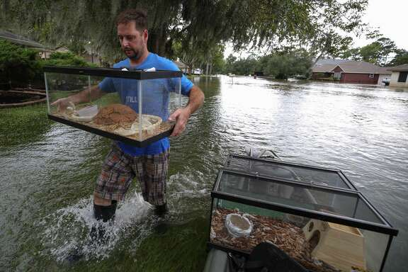 Alen Pogue carries a tank housing one of his son's pet snake after returning from his flooded home on Forrest Hollow Drive Wednesday, Aug. 30, 2017, in Baytown, Texas.  ( Godofredo A. Vasquez / Houston Chronicle )
