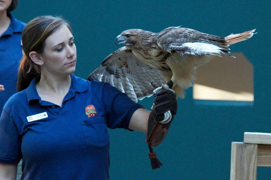 The Beardsley Zoo will host several programs for kids this summer. Photo: Contributed Photo / Connecticut Post Contributed