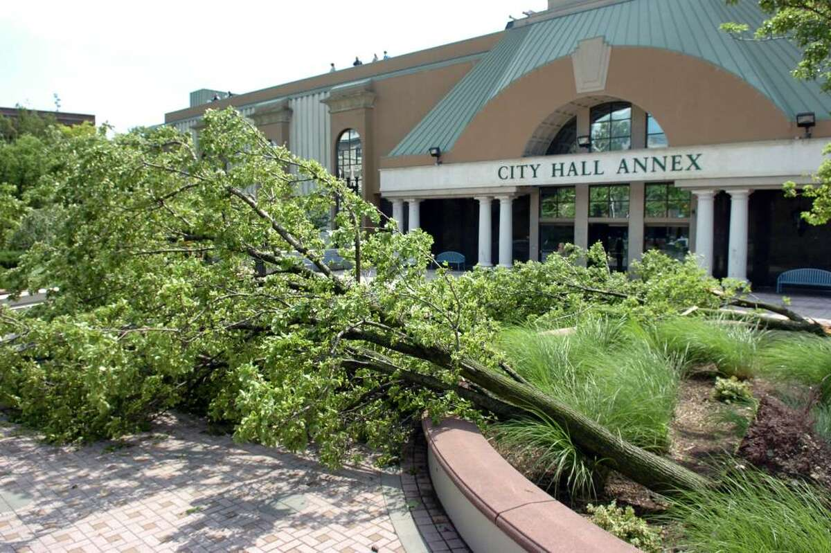 The scene in front of City Hall Annex, in downtown Bridgeport, Conn. were trees were uprooted during at storm Thursday afternoon, June 24th, 2010.