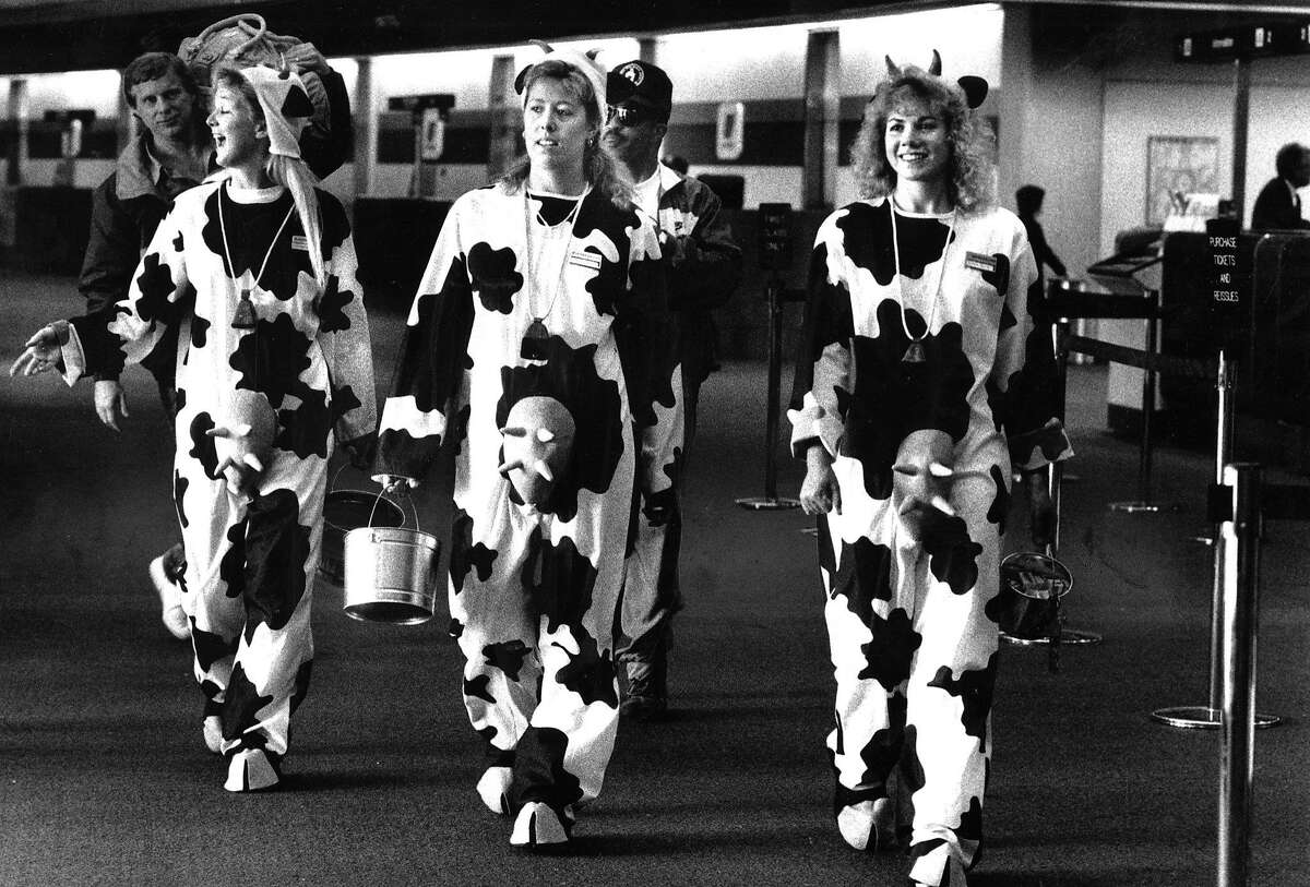 Adults in costume for various Halloween events .. (l to r) Carla Casterline, Sheri Wallace and Peggy Walters, customer service reps for Unite Airlines at the North Terminal of SFO, Photo ran 11/01/1990, p. E9