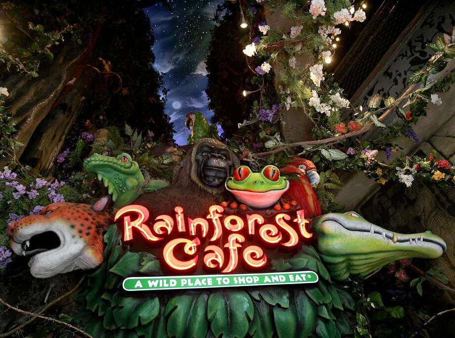 Rainforest Cafe: A wild place to shop and eat. Photo: KEVIN GEIL, SAN ANTONIO EXPRESS-NEWS