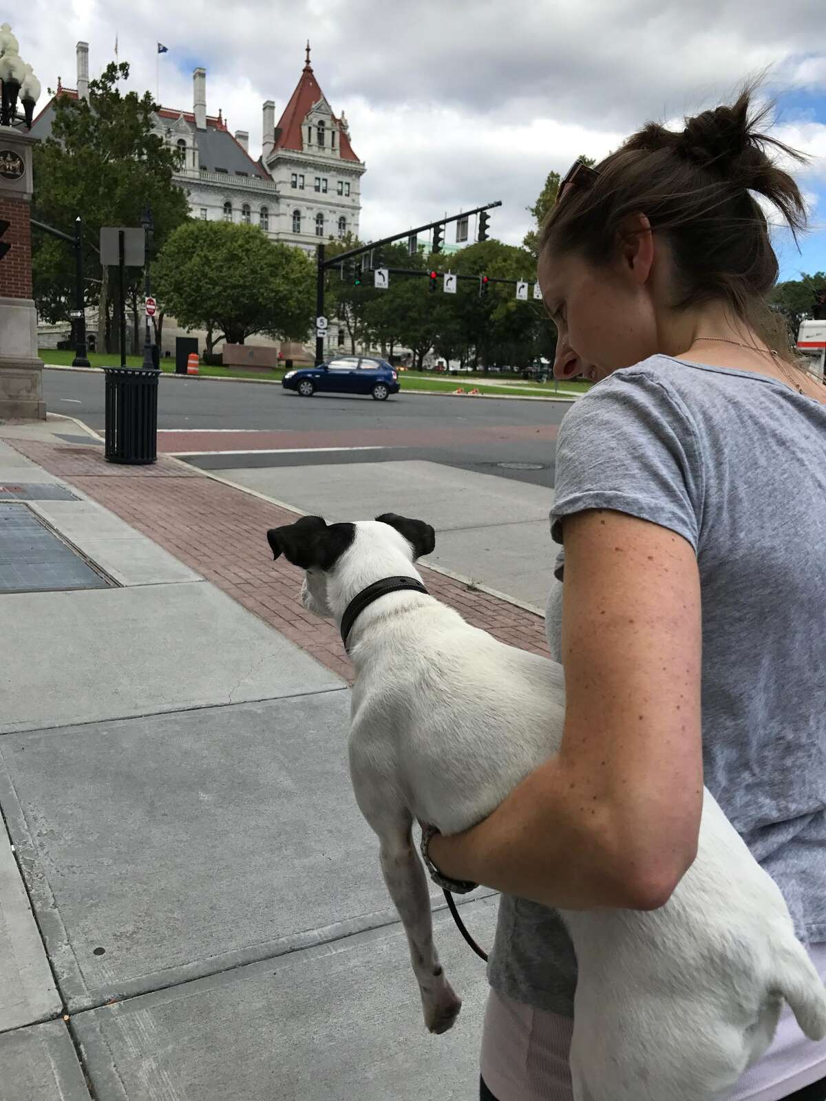 Kelle carries Chipper, a canine diva, up State Street hill toward the Capitol (Paul Grondahl / Times Union)