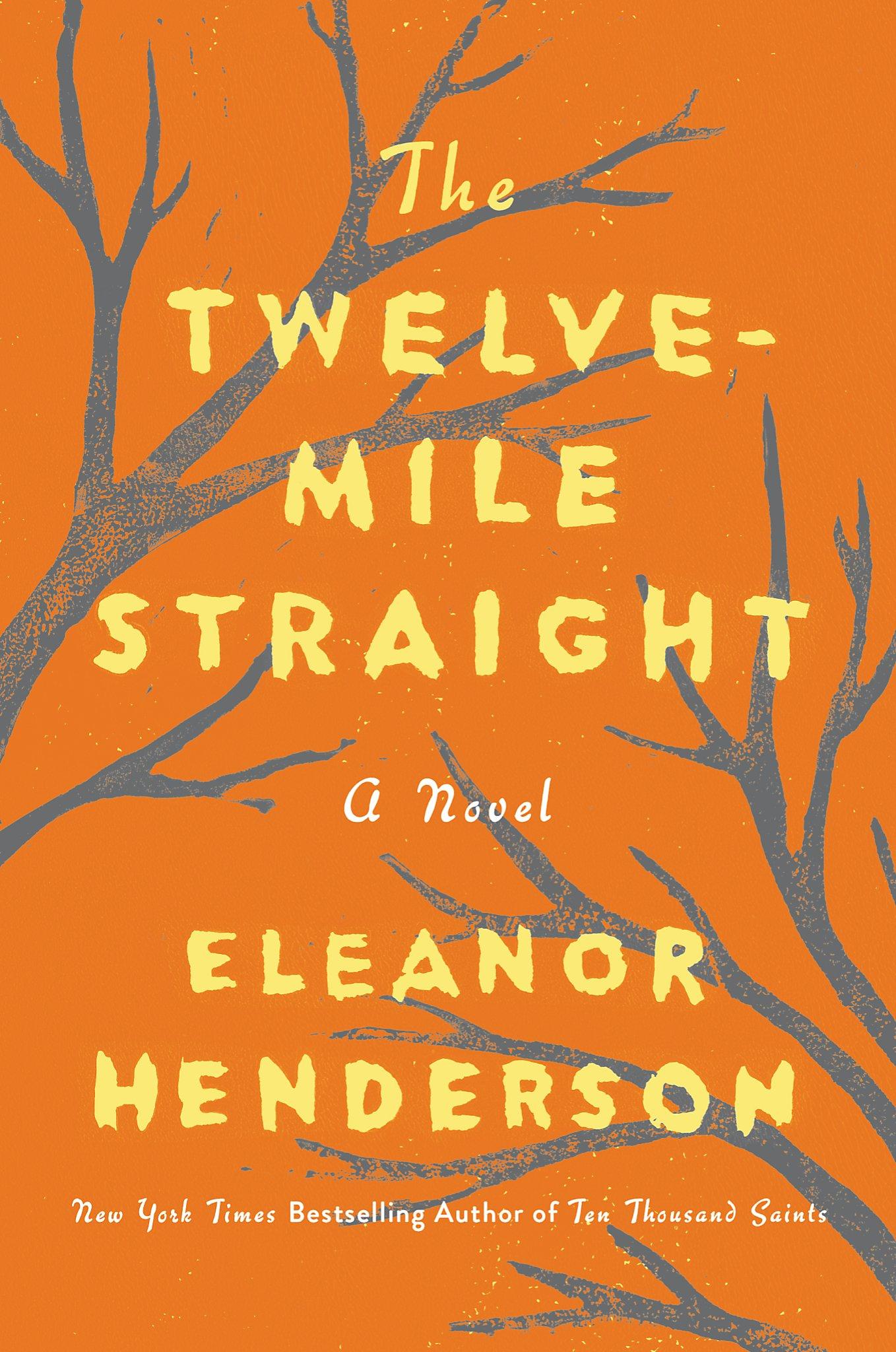 'The Twelve-Mile Straight,' by Eleanor Henderson - SFGate