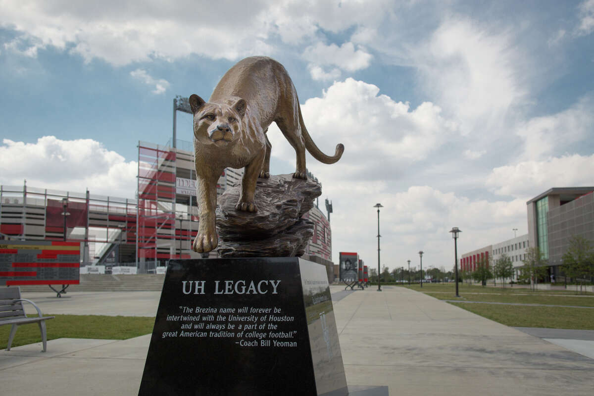 A cougar statue at TDECU Stadium, which fans rub for good luck before football games.