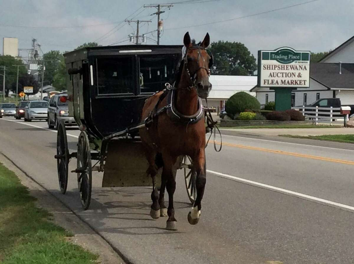 Horse-drawn buggies are the main form of transportation in Northern Indiana's Amish Country.
