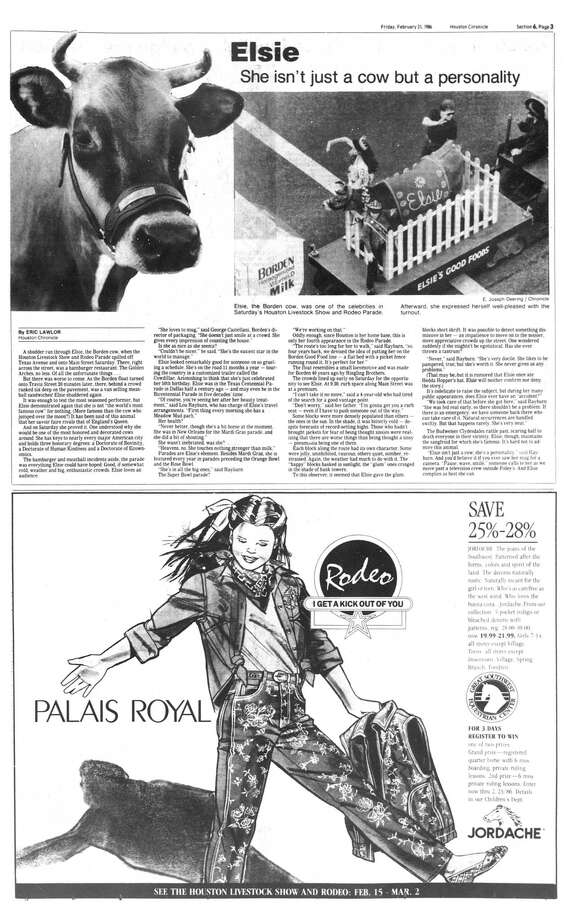 Houston Chronicle inside page -February 21, 1986 - section 6, page 3. Elsie  She isn't just a cow but a personality Photo: HC Staff / Houston Chronicle