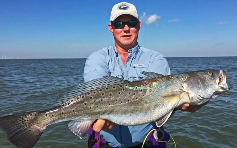This nice 27-inch trout was caught on a topwater lure along the Kenedy County shoreline in Baffin Bay with Capt. Joey Farah three weeks after Harvey. Photo: Courtesy Photo / Joey Farah