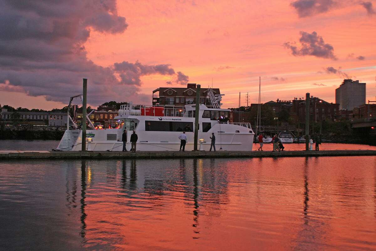 The Maritime Aquarium at Norwalk is hosting its Octoberfest craft beer cruises on Long Island Sound aboard The Spirit of the Sound, above, on Saturday evenings through October 28. Find out more.