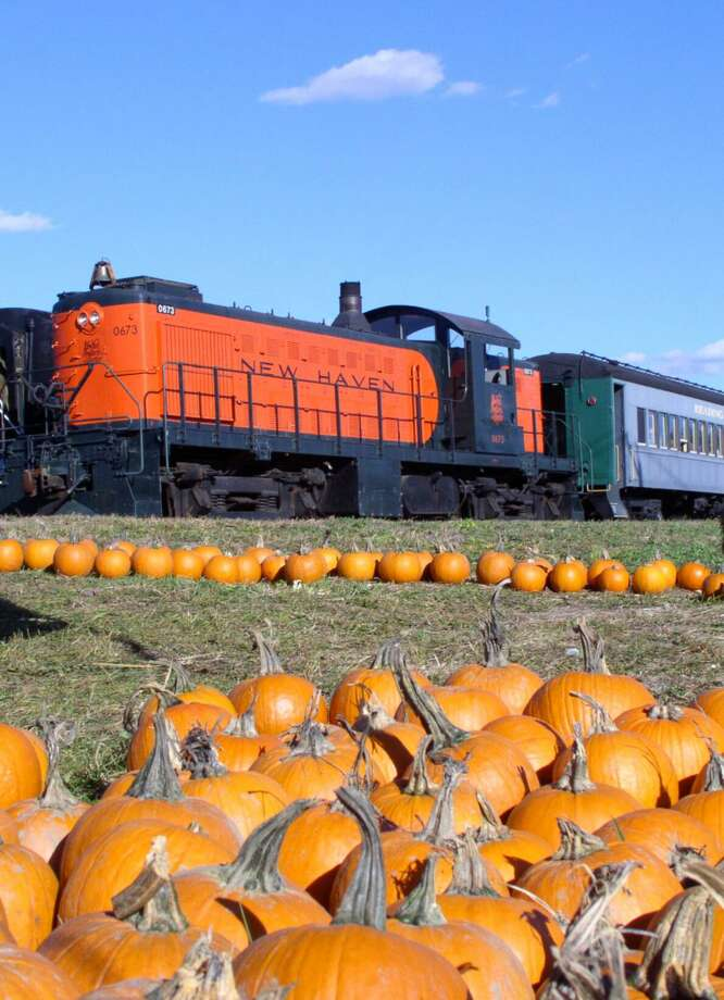 At the Danbury Railway Museum, visitors are invited to ride the Pumpkin Patch Train through the historic rail yard during October weekends in a 1920s passenger coach Photo: Danbury Railway Museum / Contributed Photo