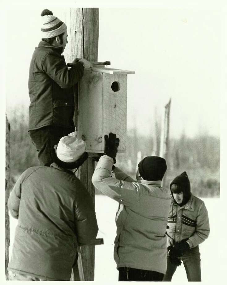 Volunteers and DNR staff members install a wood duck nesting box on the frozen impoundment of the Kawkawlin Creek State Wildlife Management Area almost 35 years ago. (Steve Griffin/file photo for the Daily News)