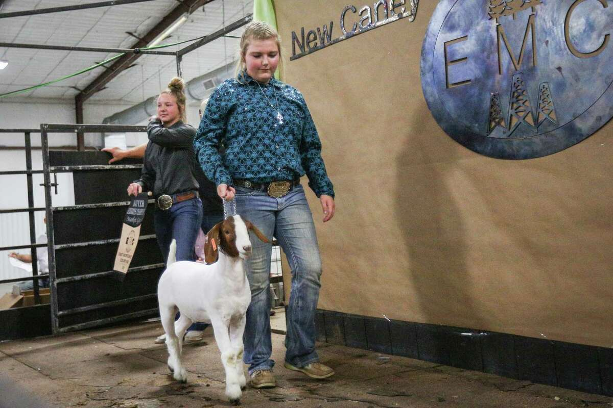 Splendora FFA's Hannah Wiggins shows her reserve champion goat during the East Montgomery County Fair Auction on Saturday, Sept. 16, 2017, at A.V. 'Bull' Sallas Park in New Caney.