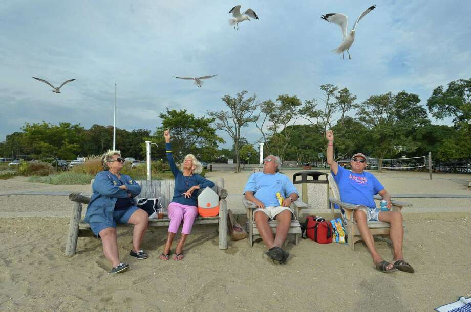 Rowayton residents Ronnie Gala, Betty Berry, Clay Morsey and Frank Chmielinski enjoy their day off feeding the seagulls at Bayley Beach on Thursday, Oct. 5, in Norwalk. Photo: Alex Von Kleydorff / Hearst Connecticut Media / Norwalk Hour