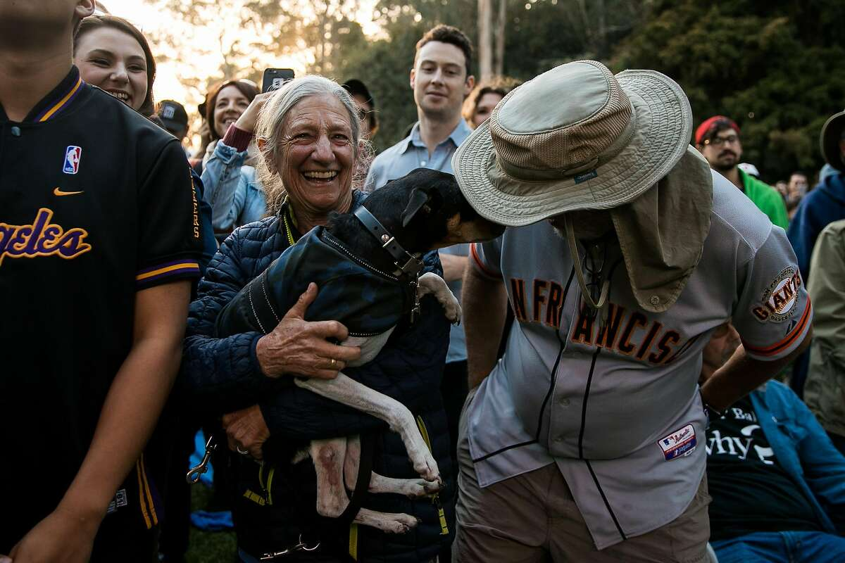 Debby Stein holds up her dog, Mica, as Frederick Laudi nuzzles his head with Micas, during the Dan Auerbach performance at the Rooster Stage at the Hardly Strictly Bluegrass in San Francisco, Calif. Saturday, October 7, 2017.