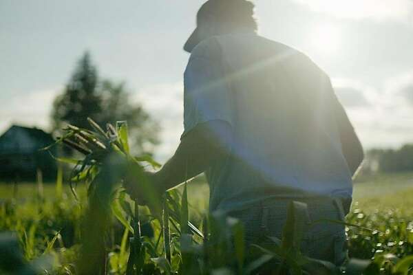 """A scene from """"Wasted! The Story of Food Waste,"""" a documentary directed by Anna Chai and Nari Kye."""
