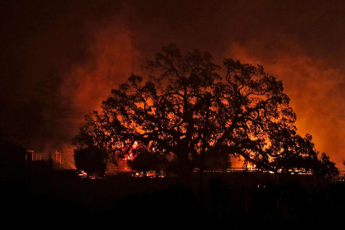 A structure burns behind an oak tree as a wild fire burned on Soda Canyon Road in Napa, Calif., on Monday, October 9, 2017.