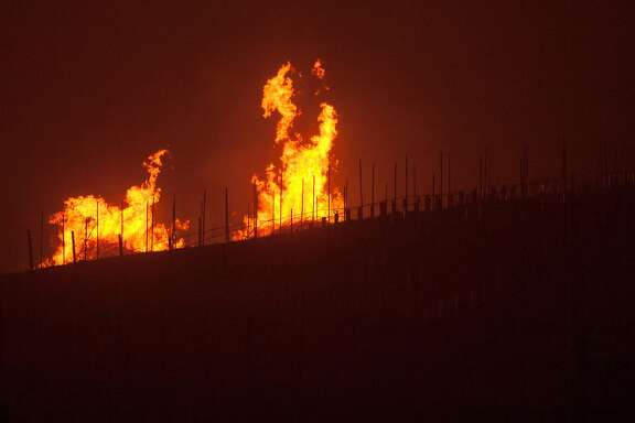 Flames burn through a vineyard as a fast moving wind whipped wild fire raged though the Napa/Sonoma wine region in NAPA, CALIFORNIA, USA 9 Oct 2017.   Multiple fire have erupted in Napa, Sonoma, Calistoga and the Santa Rosa area, burning homes and wineries. Mandatory evacuations have be displaced hundreds of residents through out the area.