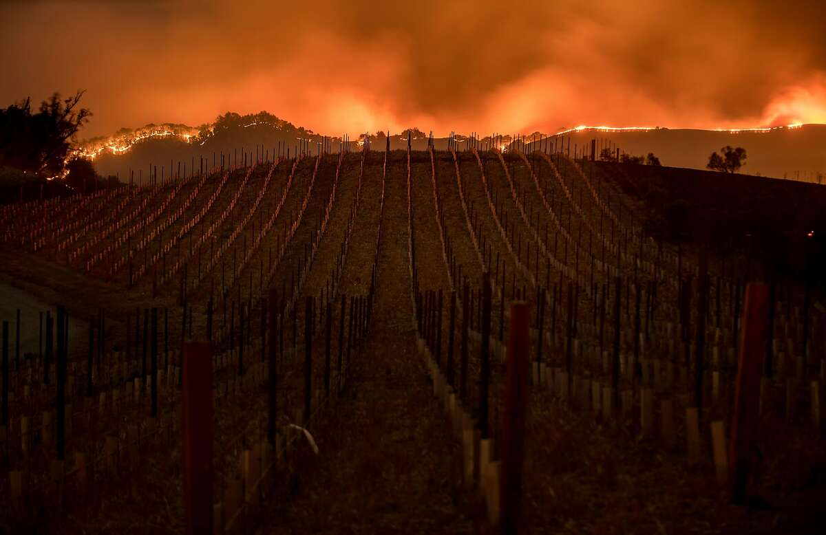 Flames burn along a ridge top behind a Partrick Rd. vineyard in Napa, Calif., on Monday, Oct. 9, 2017.