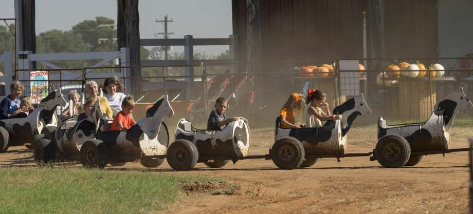 Midland YMCA afterschool program invited their students to a fun day at Fiddlesticks Farms 10/09/17 with MISD schools closed for Columbus Day. Tim Fischer/Reporter-Telegram Photo: Tim Fischer/Midland Reporter-Telegram