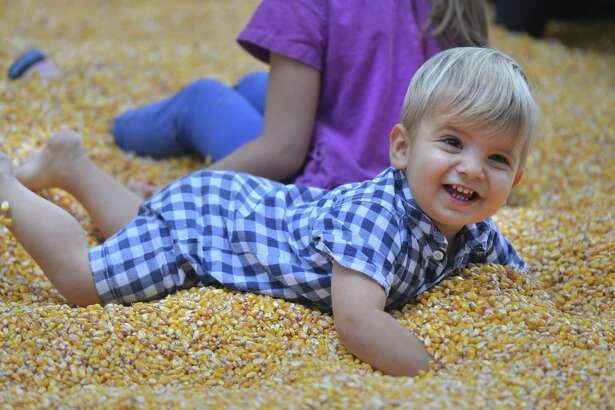 One-year-old Anthony Bthl, of Westport, tries swimming in the corn pool, a hay bale enclosure filled with kernels of corn, during the Earthplace Festival at the Earthplace Nature Center in Westport on Sunday.