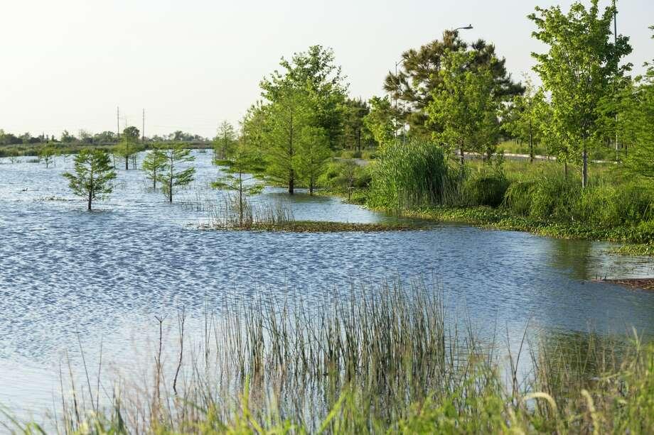 Stormwater infrastructure at Cross Creek Ranch. Photo: Jonnu Singleton, Courtesy Of SWA Group