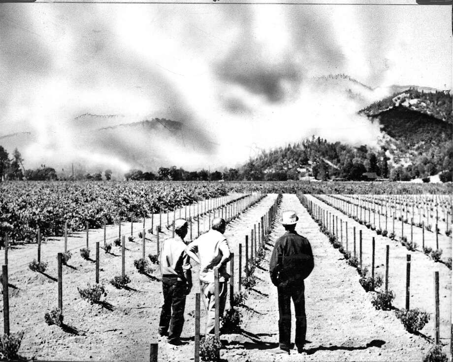 Vineyard workers watch the brush fire in the foothills above a winery near Calistoga.