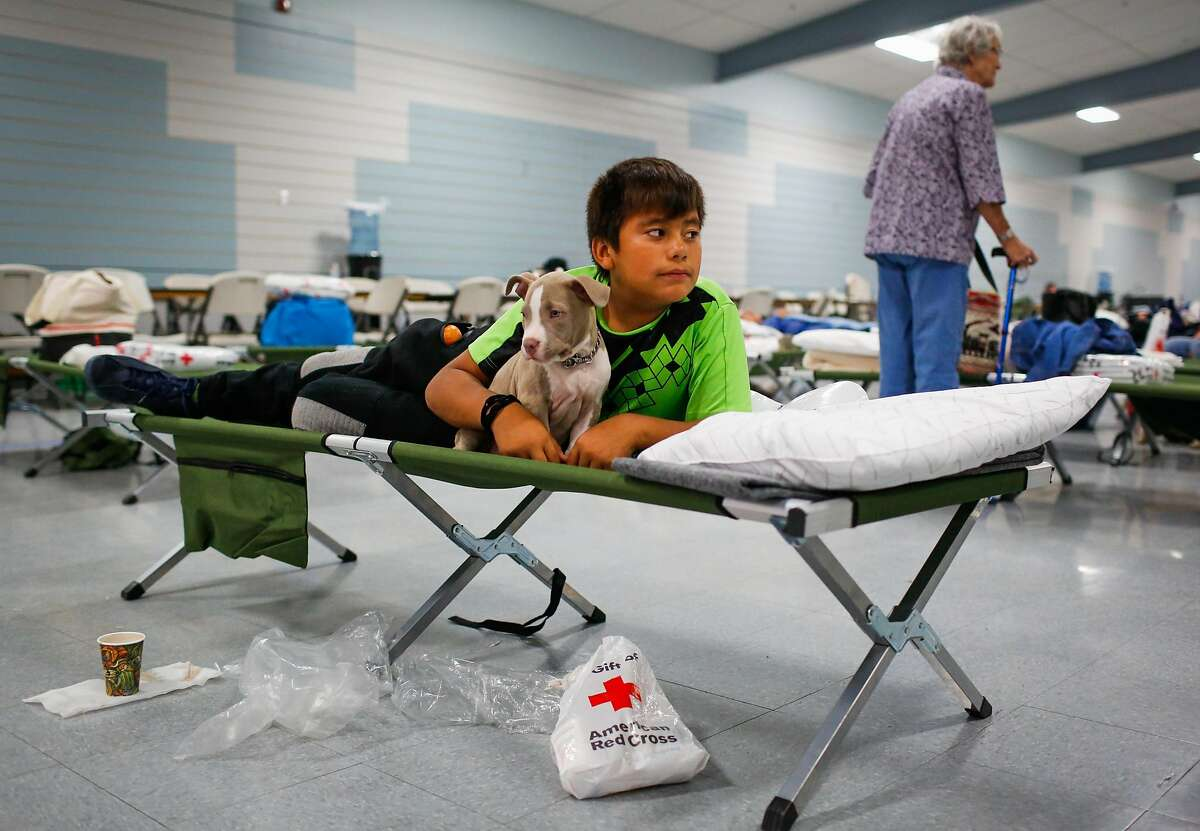 Evacuee Junior Gomez, 11, rests with his puppy Smoky, 2 months at a Red Cross shelter after evacuating his home with his parents following the Tubbs fire in Santa Rosa, Calif., on Monday, Oct. 9, 2017.