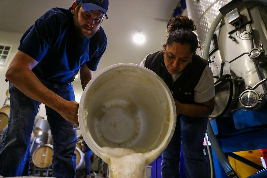 Assistant winemaker Justin Kinkade and Silvia Ortiz pour yeast starter into a bucket at Lewis Cellars in Napa. Photo: Gabrielle Lurie, The Chronicle