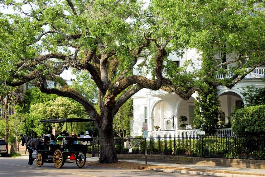 17. Charleston, SC