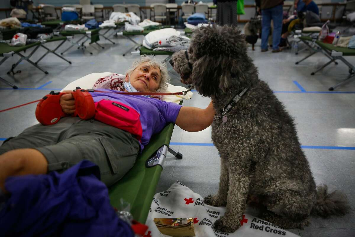 Evacuee Martha Lynn rests with her dogs Broonzy (not pictured) and Golly (right) at a Red Cross shelter after evacuating her home following the Tubbs fire in Santa Rosa, Calif., on Monday, Oct. 9, 2017.