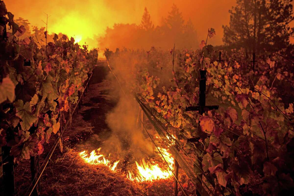 Fire burns in the in the vineyards of Paras Vineyards as the main structure on the property burns in the background as fire from the Nun Fire continue to burn west of downtown Napa, California, USA 10 Oct 2017.